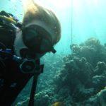 Hurghada, Egipt 48szkoła nurkowania kraków