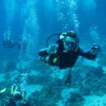 Hurghada, Egipt 58szkoła nurkowania kraków