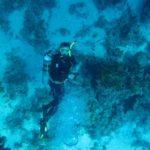 Hurghada, Egipt 66szkoła nurkowania kraków