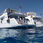 Hurghada, Egipt 77szkoła nurkowania kraków