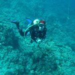 Hurghada, Egipt 99szkoła nurkowania kraków