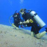 Dahab, Egipt 155szkoła nurkowania kraków