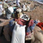 Dahab, Egipt 160szkoła nurkowania kraków