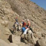Dahab, Egipt 186szkoła nurkowania kraków