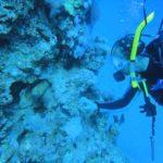 Dahab, Egipt 18szkoła nurkowania kraków