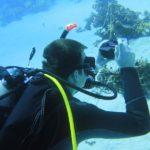 Dahab, Egipt 37szkoła nurkowania kraków