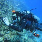 Dahab, Egipt 41szkoła nurkowania kraków