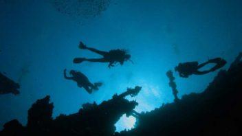 Specjalizacja głęboka