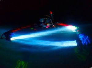 Nurkowanie nocne – odkrywamy nowy świat 9szkoła nurkowania kraków