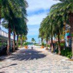Nassau, Bahamy 13szkoła nurkowania kraków