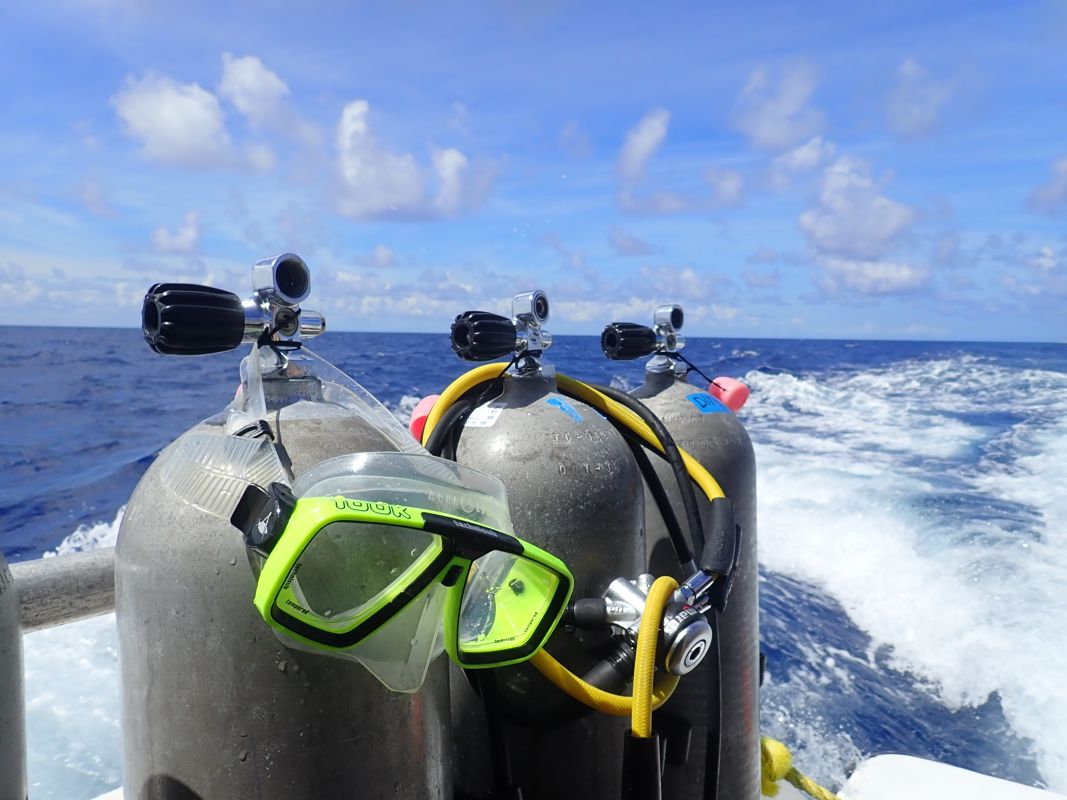 Nurkowanie ze Stuart Cove's Dive Center 4szkoła nurkowania kraków