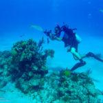 Nassau, Bahamy 91szkoła nurkowania kraków