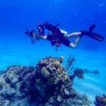 Nassau, Bahamy 92szkoła nurkowania kraków