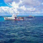 Nassau, Bahamy 144szkoła nurkowania kraków