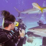 Nassau, Bahamy 169szkoła nurkowania kraków