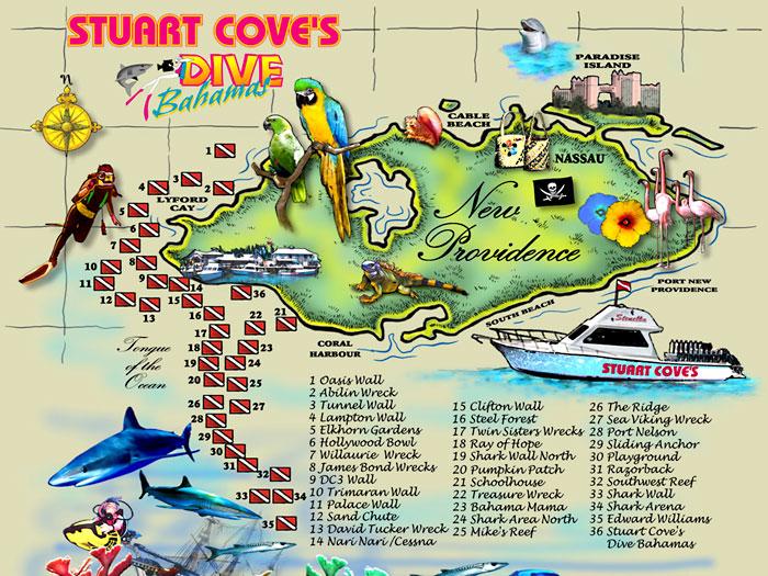 Miejsca w których zanurkowaliśmy na Bahamach 2szkoła nurkowania kraków