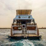 Safari nurkowe w Egipcie - Północ + Wyspy Brother's + Salem Express 9szkoła nurkowania kraków