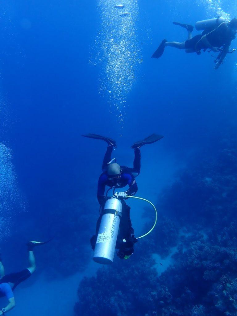 Nurkowanie w Marsa Alam 3szkoła nurkowania kraków