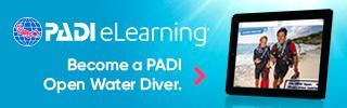 Kurs Open Water Diver online