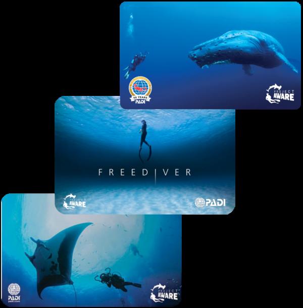 Certyfikat nurka PADI teraz w wersji elektronicznej e-Cards PADI. 1szkoła nurkowania kraków