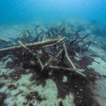 Jaworzno - Koparki 43szkoła nurkowania kraków