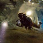 Deepspot 37szkoła nurkowania kraków